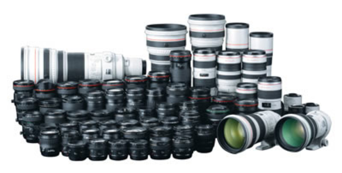 Best Canon Lenses for Beginners and Advanced Photographers