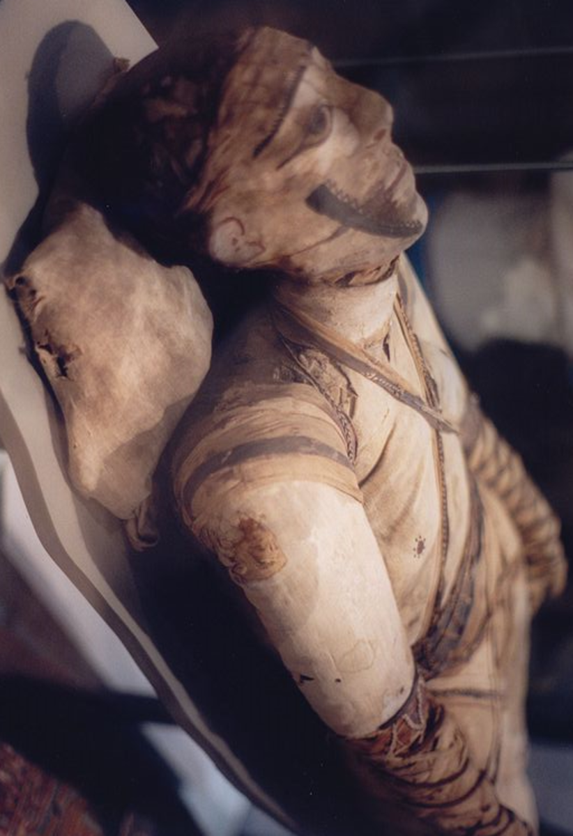 A photograph of an Egyptian mummy in a museum.