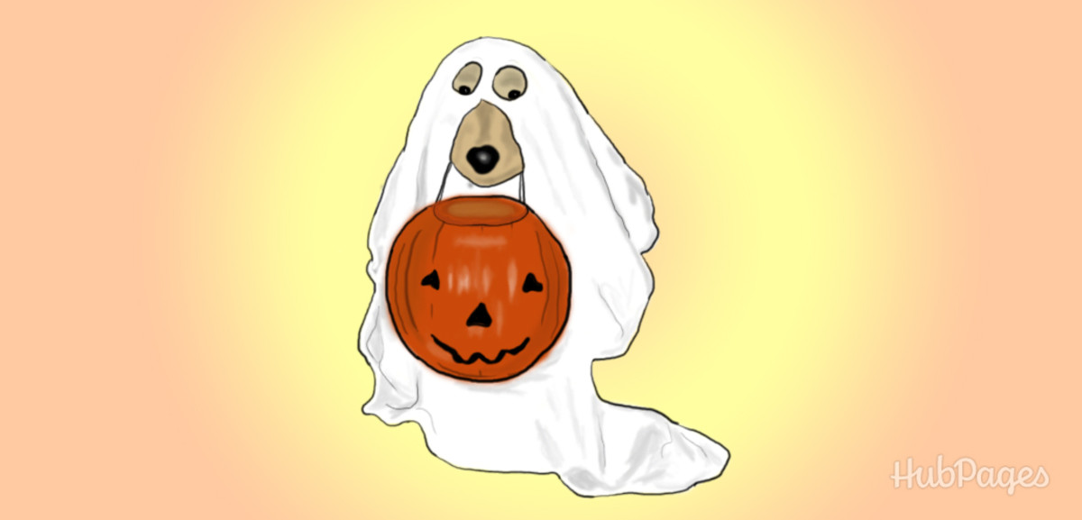 Looking for a pet costume? Dress your dog up as a ghost!