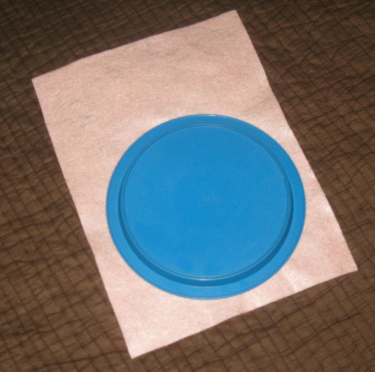 Use the plate as a template to trace and cut a circle from the pink felt.