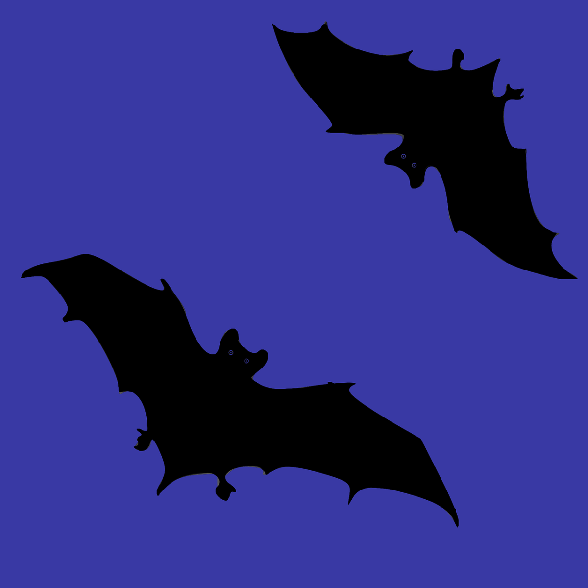the-folklore-of-bats