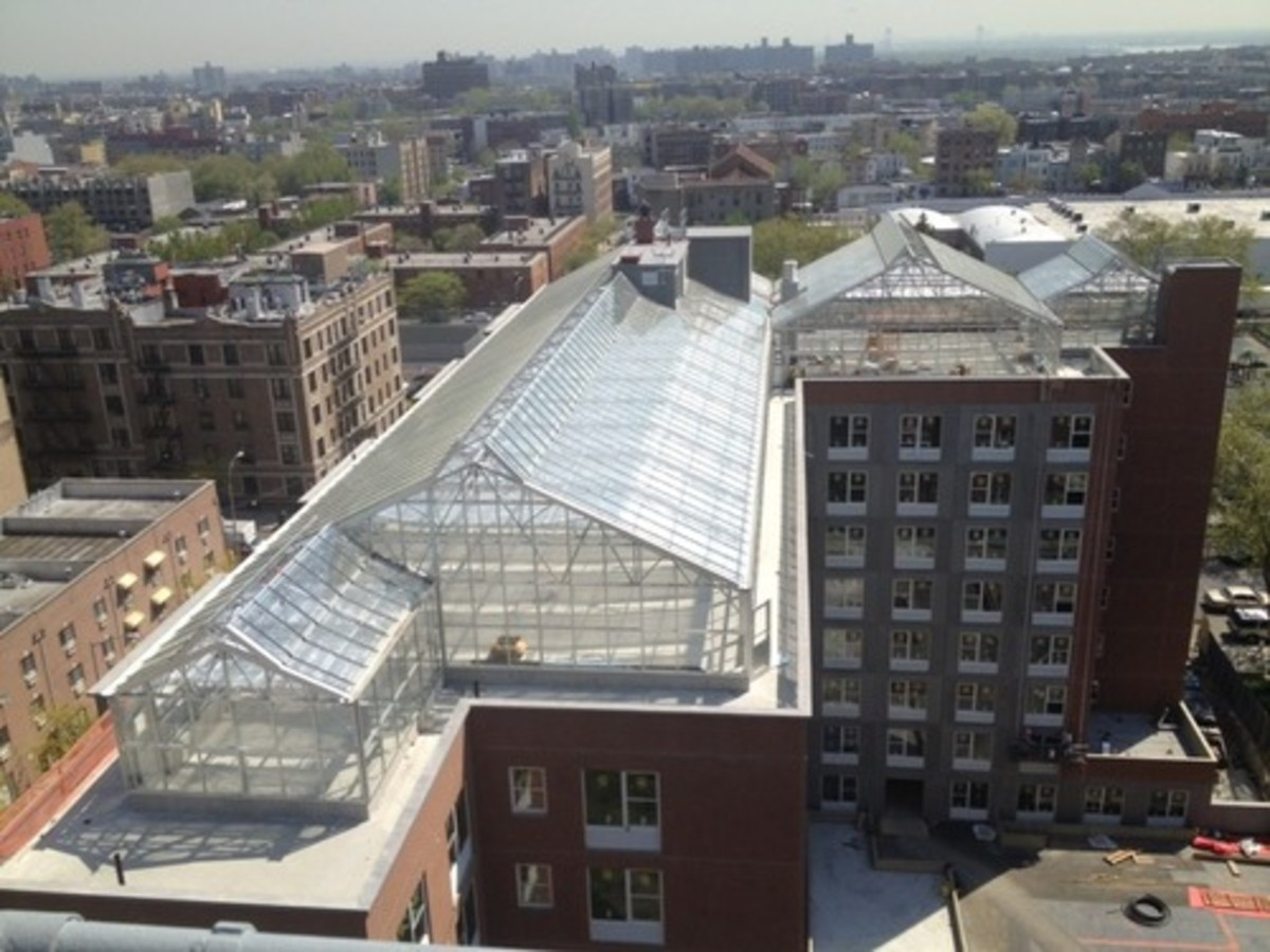 """Known as """"Arbor House"""", the nearly $38 million project built on land purchased from the New York City Housing Authority's Forest Houses property in Morrisania boasts a hydroponic rooftop farm for growing fresh vegetable."""