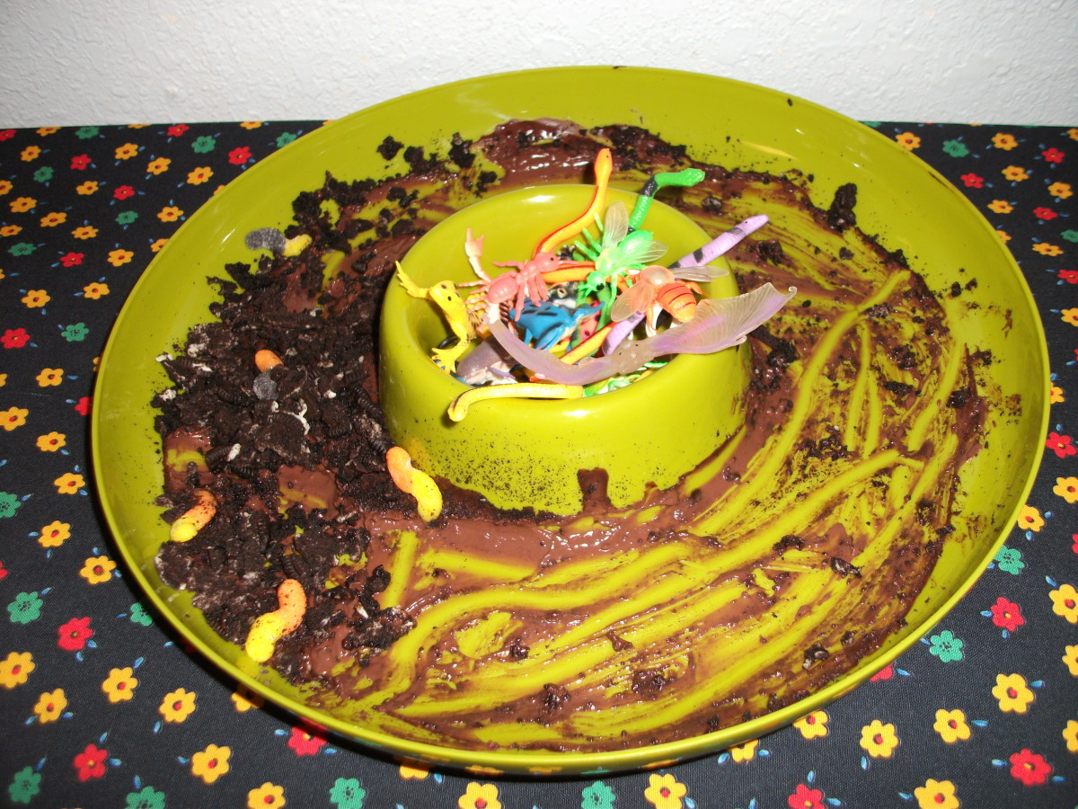 Chocolate pudding and crumbled cookies with some toy bugs for effect.  So good, everyone gobbled it up.