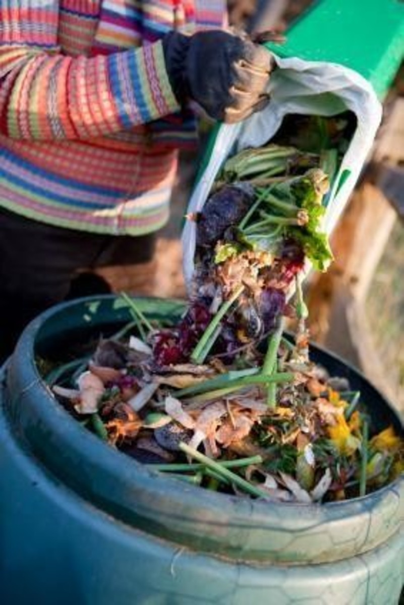 using-the-compost-tumbler-for-easy-composting