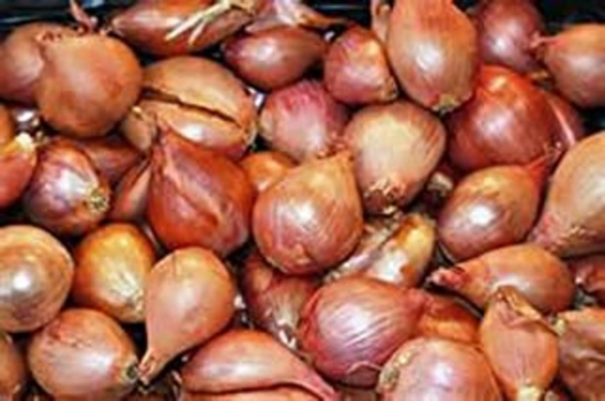 peel, cut shallots into thin slices, fry in deep oil until brown and crispy