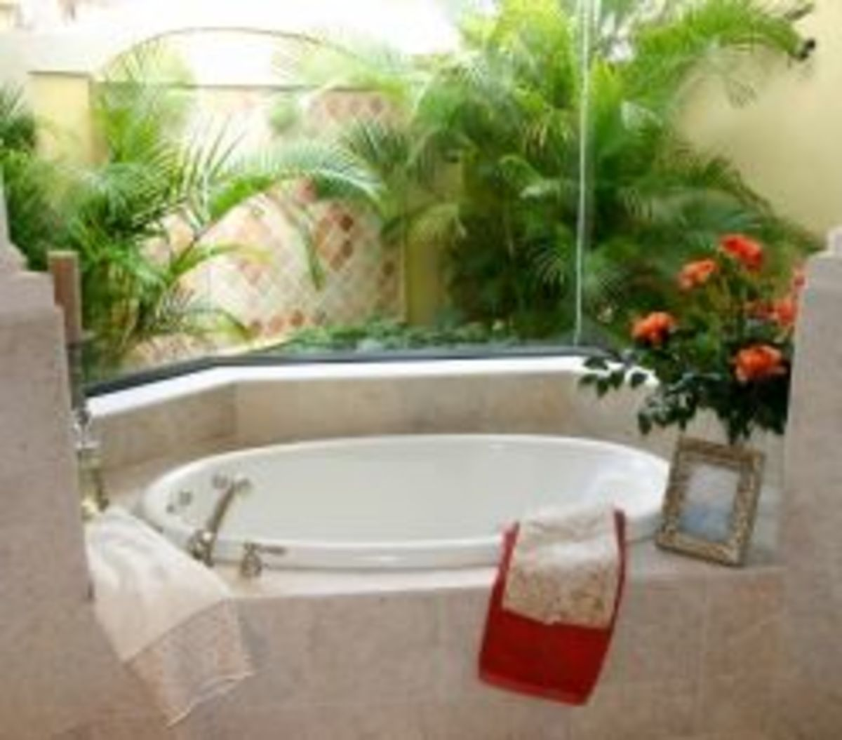 bathroom-plants-tips-for-using-plants-in-bathrooms