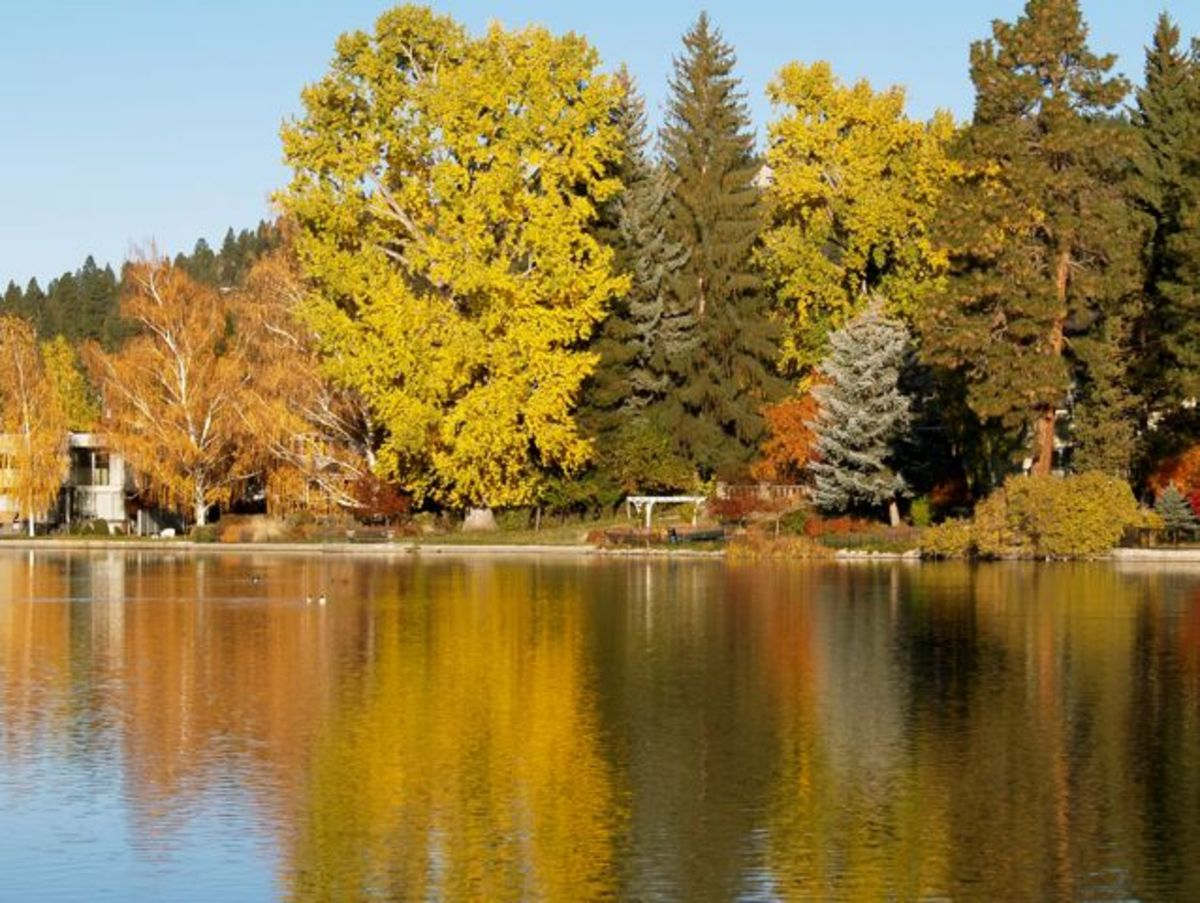 Autumn colors in reflection