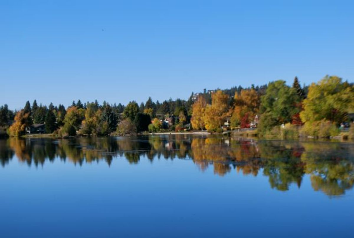 Fall trees line Mirror Pond in Bend, Oregon