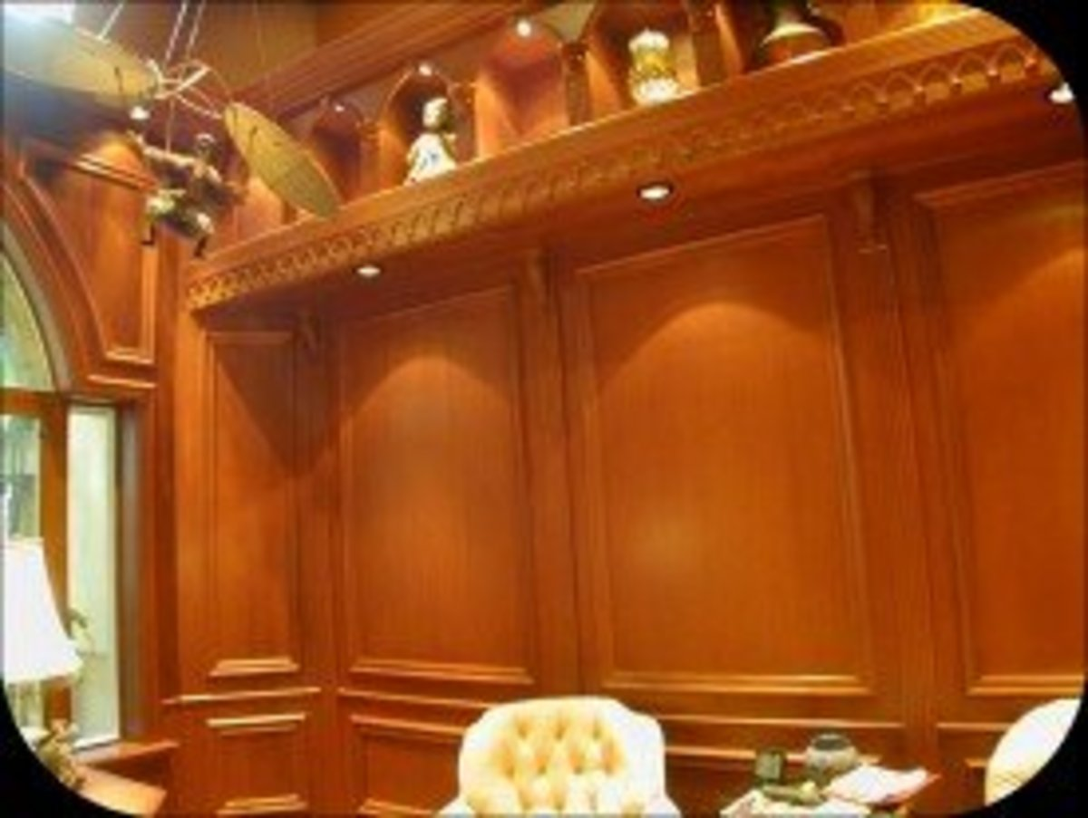 Library Mahogany Gothic with raised molding and recessed lights