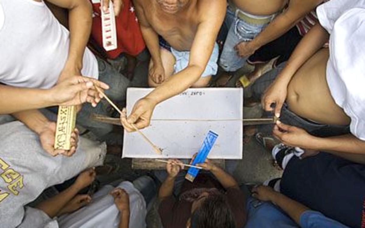 philippine-spider-fighting