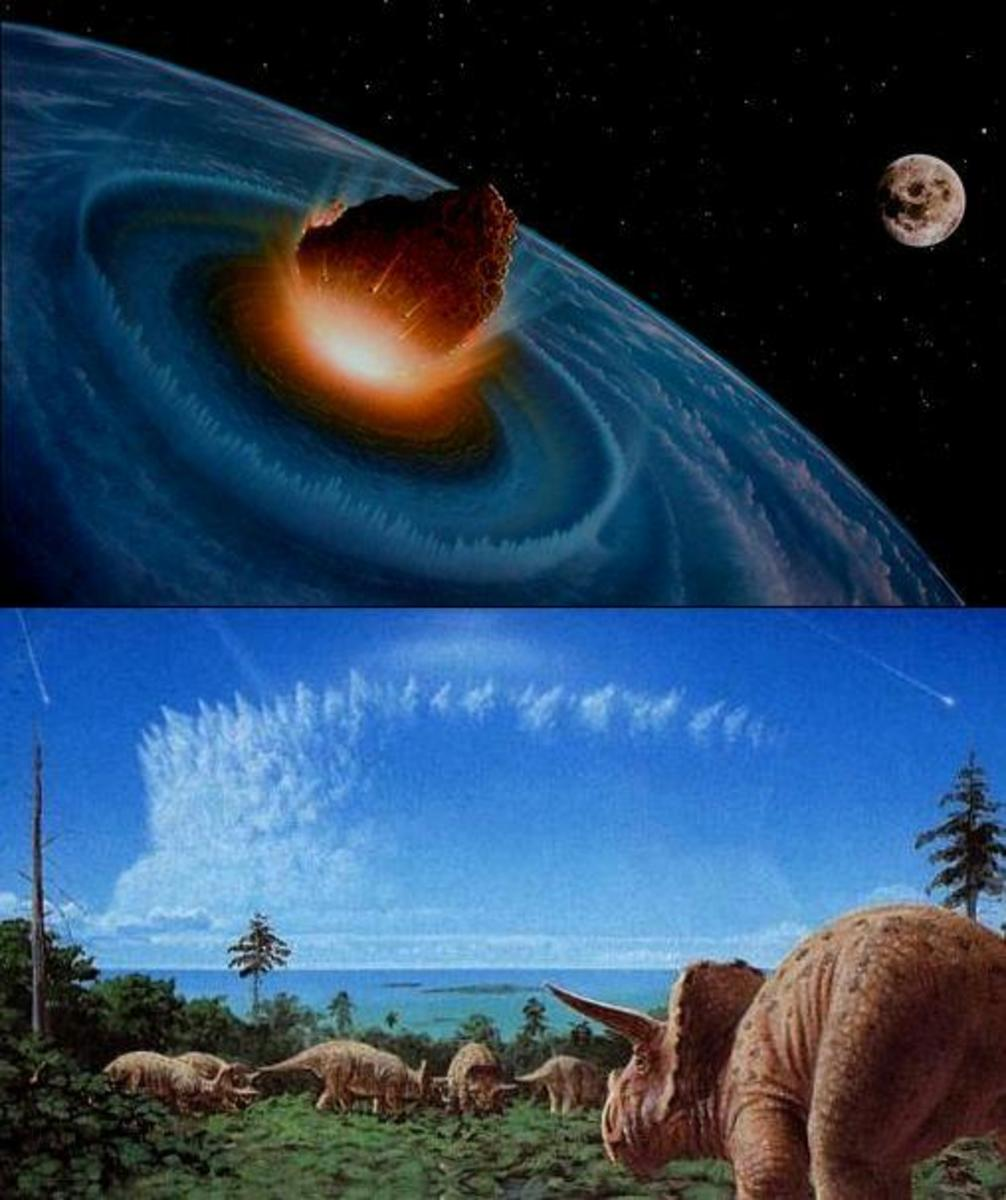 Asteroid strikes Earth. This generates a cloud of dust that blocks out the Sun. No photosynthesis. No plants. No Triceratops. No T-rex.