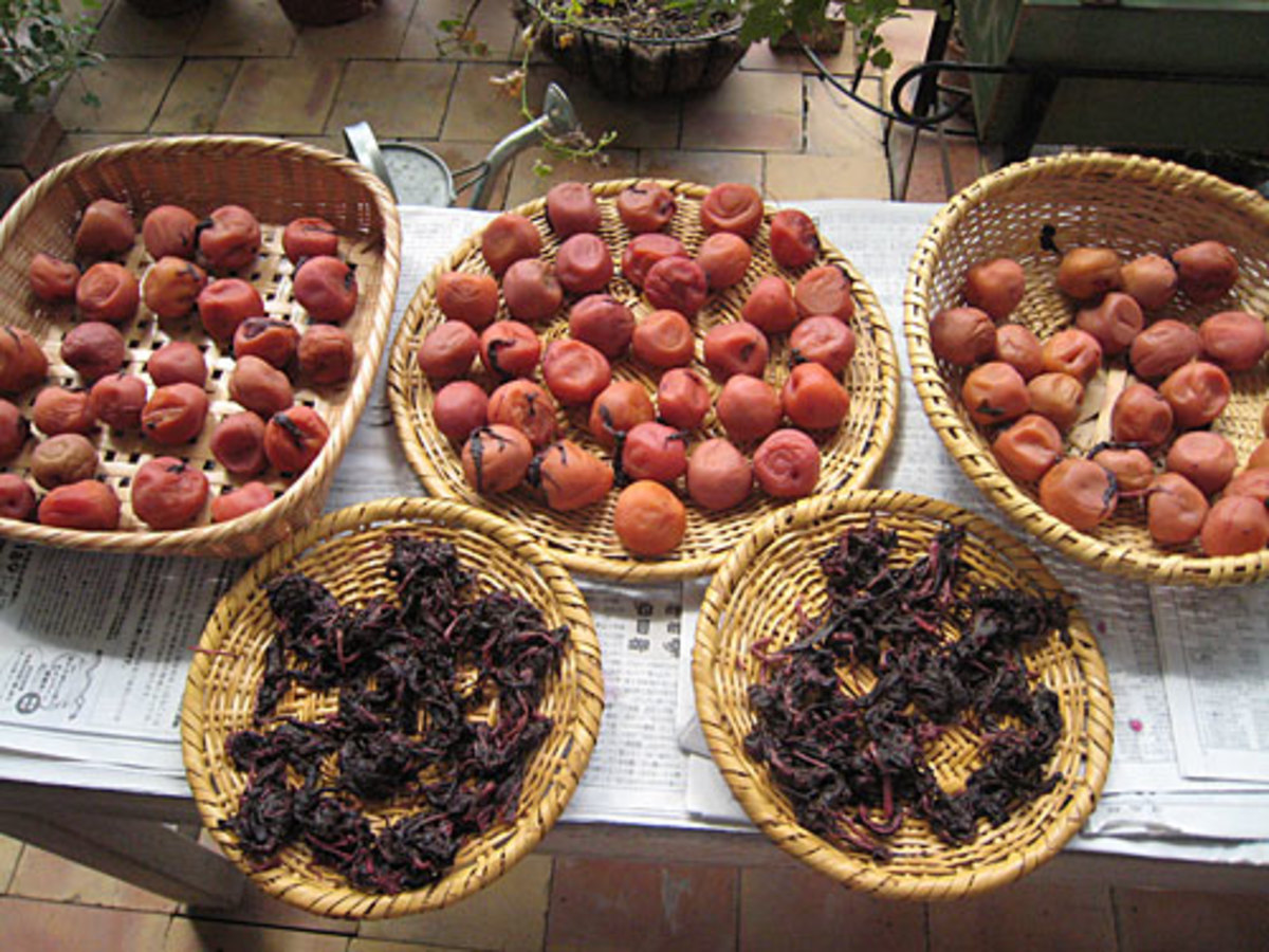 Umeboshi sour plums are nearly always dried in the sun.