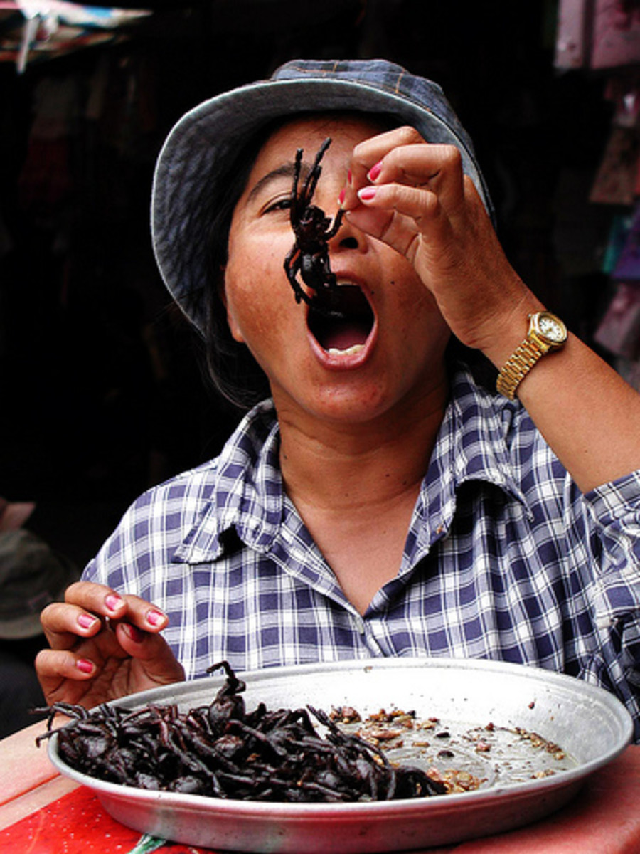 Finger Foods, Thailand & Cambodia Spiders, snakes and deep fried insects