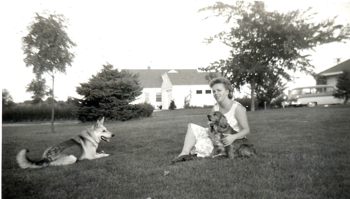 My mother with Rusty and Sheba