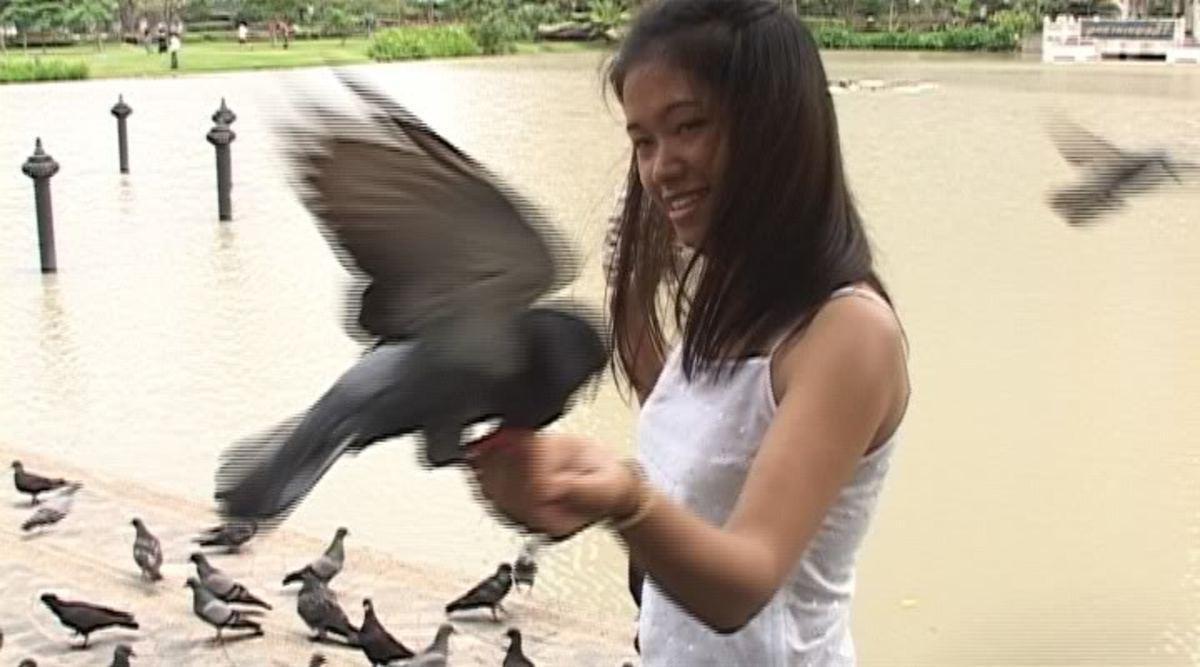 film-review-for-the-cbc-documentary-bangkok-girl-2005
