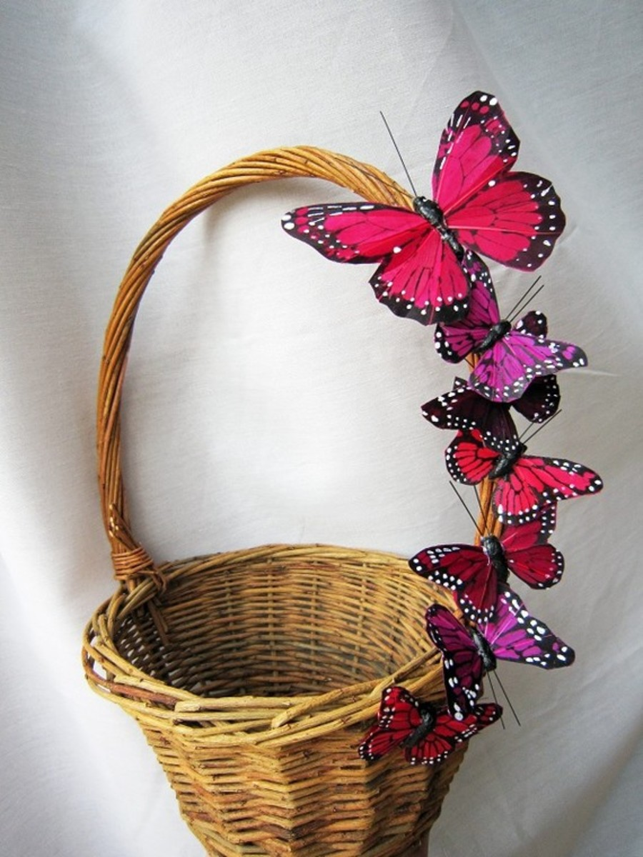 Butterfly basket.  This would look great with moss around the basket too.