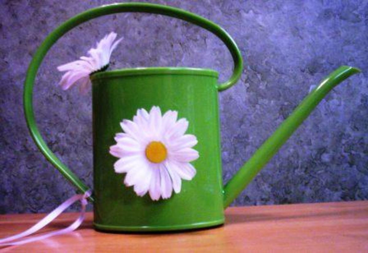 eco-friendly watering can/basket