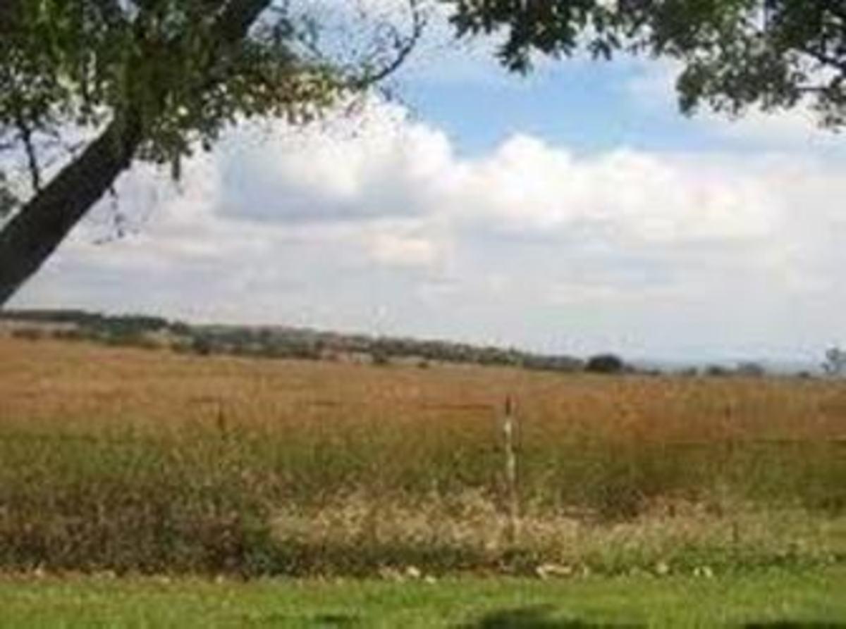 Farm near Derby