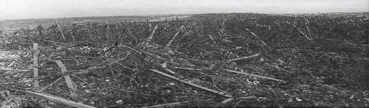 With the forest long destroyed, no man's land (between the two armies) consisted of mud, shell holes and miles of tangled barbed wire, flanked by machine guns, mortars and snipers.