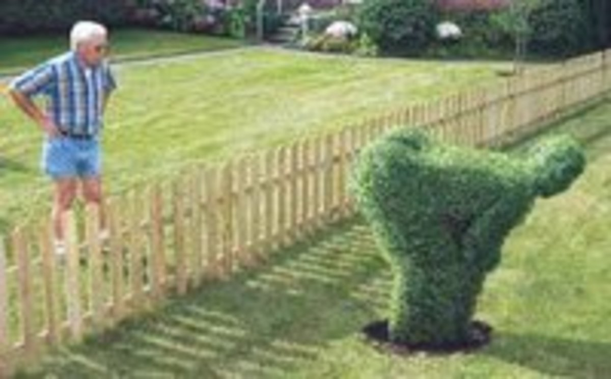 Interesting topiary revenge