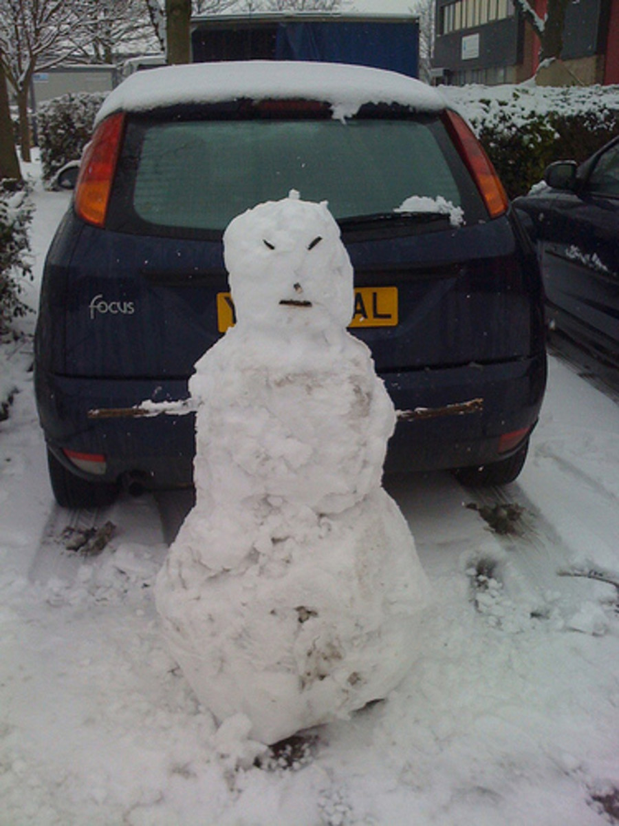 Build a snowman to block their driveway
