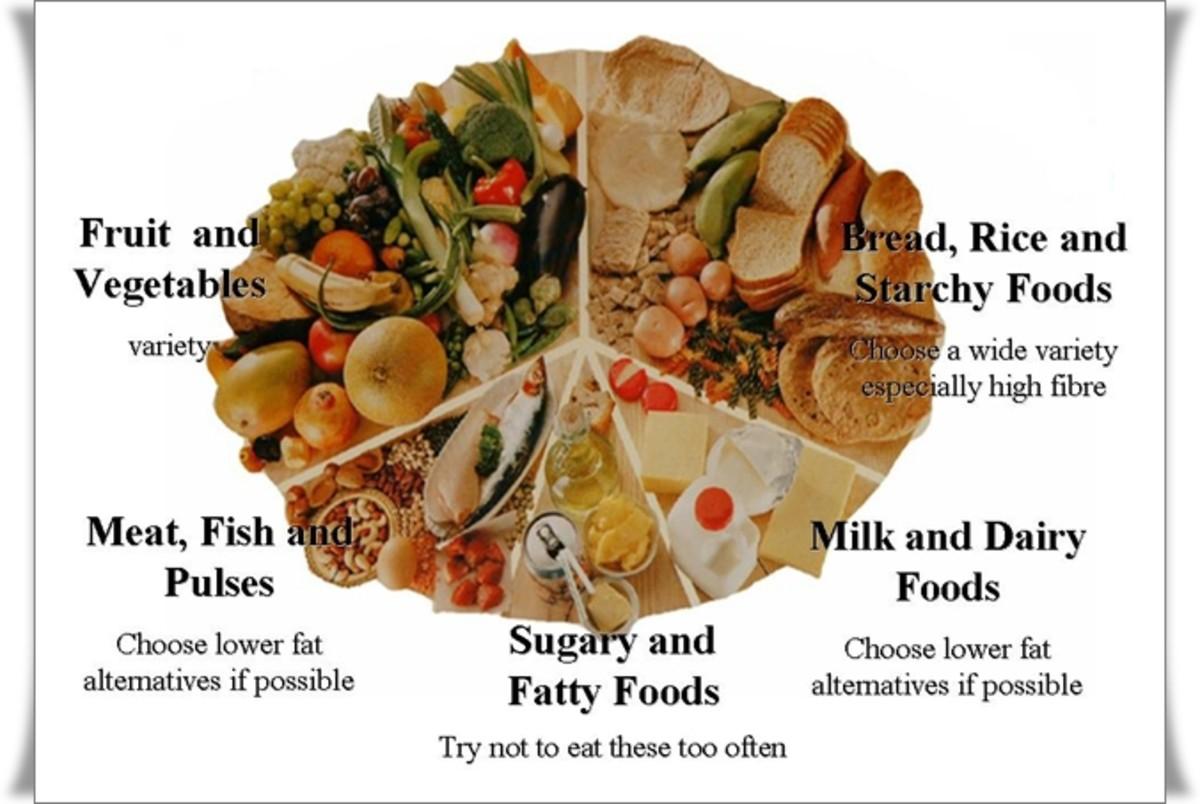 The Balanced Diet Wheel - Photo: Courtesy of Maxim Energy