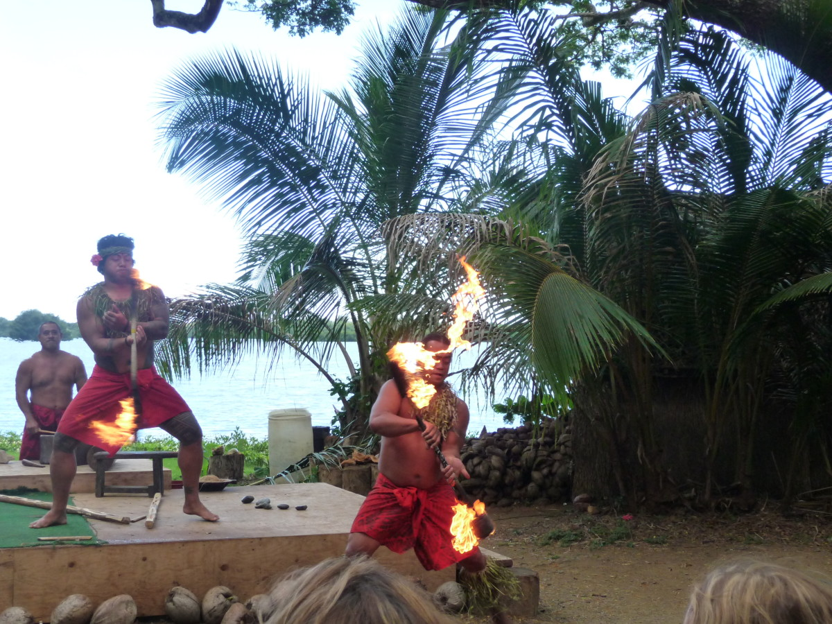 Some of the entertainment along the Macadamia Nut Farm tour
