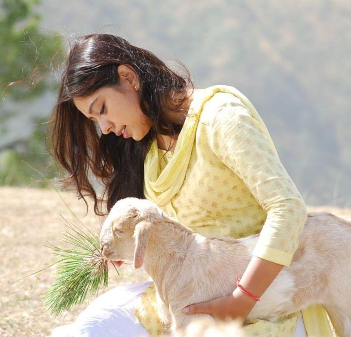 Neha Sargam as Nivedita