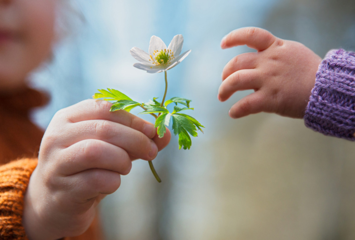 A simple act of giving a flower impresses the young mind.