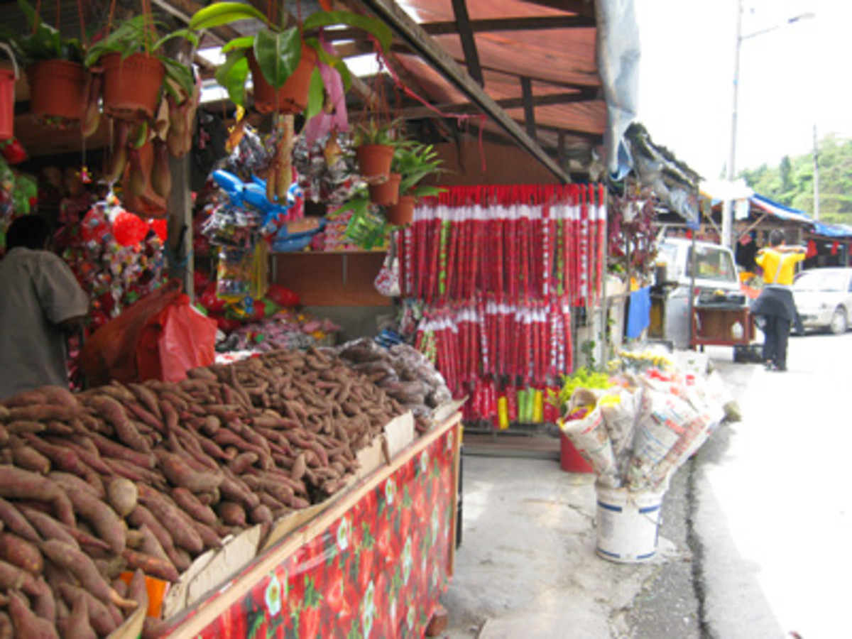 The stallholders were happy to tell me all about these native potatoes and how to cook them.
