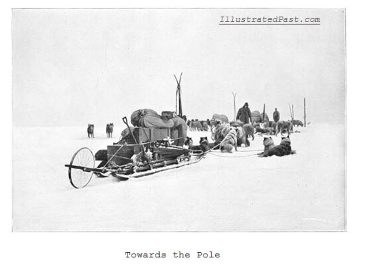 Towards the South Pole on Dog Sleds