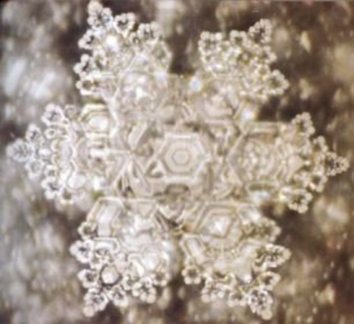 mind-over-matter-ice-crystals-and-doctor-masuro-emoto