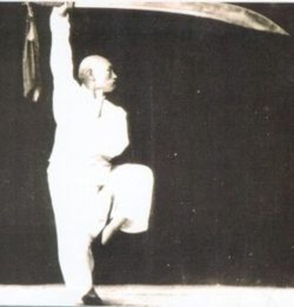 Baguazhang Practitioner