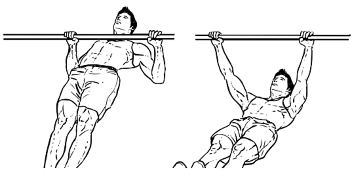 inverted-rows-to-build-your-back-muscles