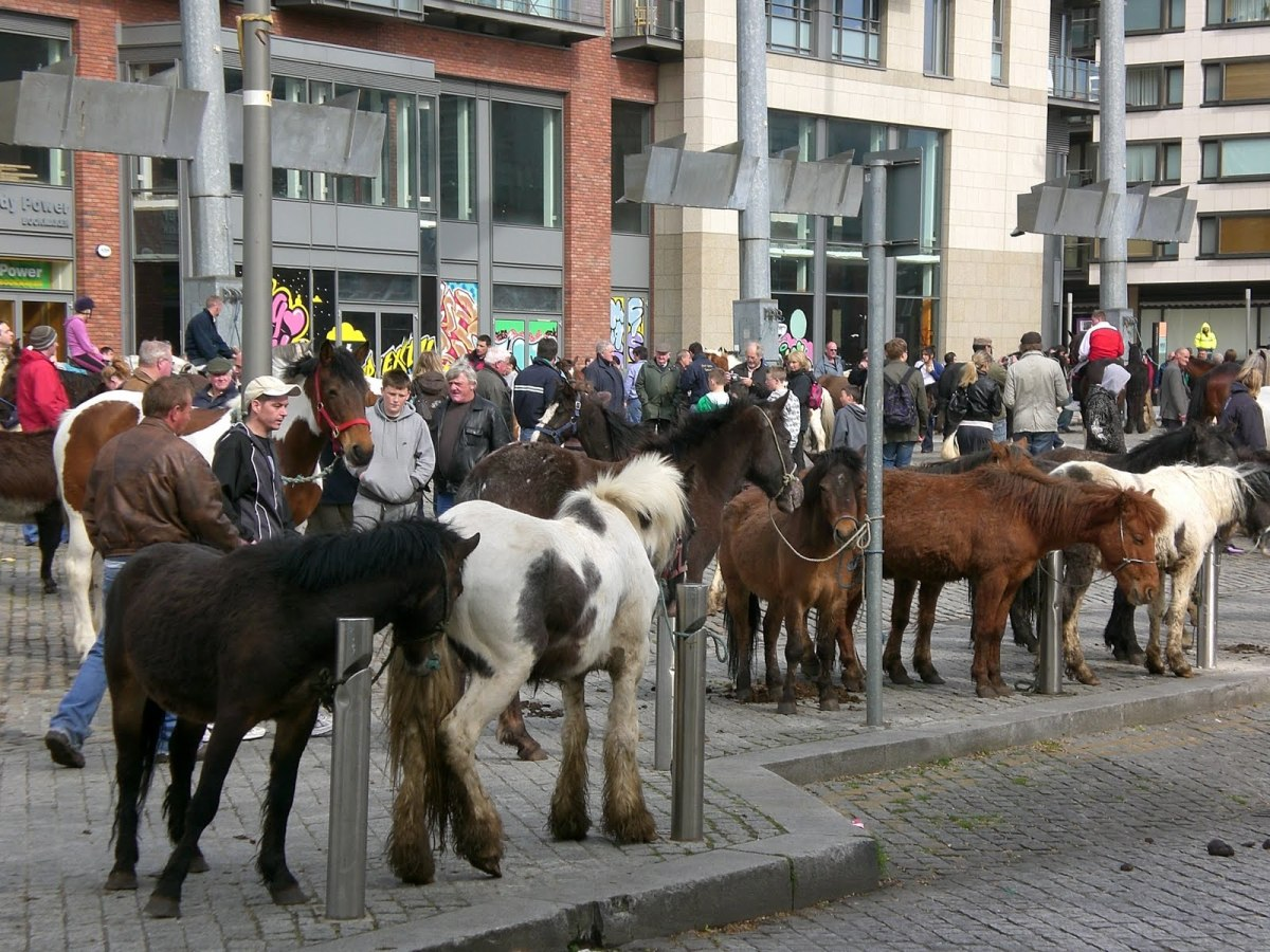 traditional-gypsy-horse-fairs-in-the-uk