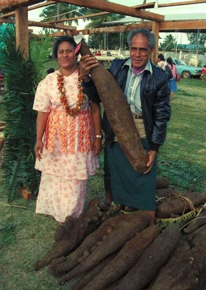 Tongan farmer showing off his prize yams, source: Wikipedia