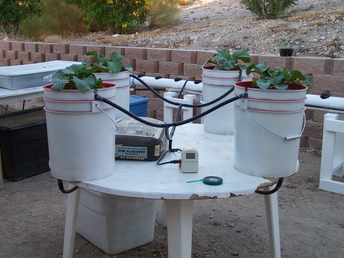 how to build a hydroponic growing system using buckets to grow big frosty buds hubpages. Black Bedroom Furniture Sets. Home Design Ideas