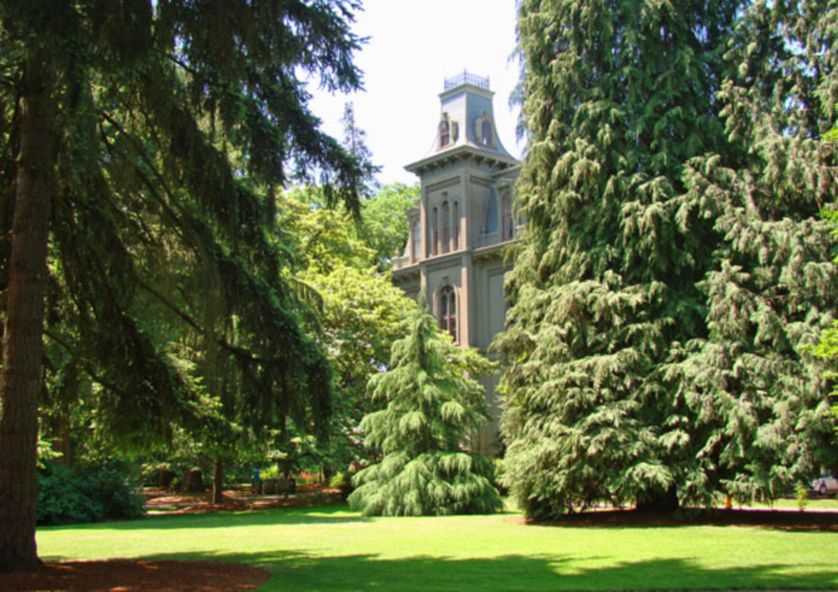 Free Things To Do in Eugene Oregon
