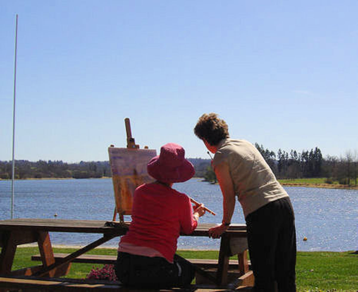 Painting tuition on the banks of the lake