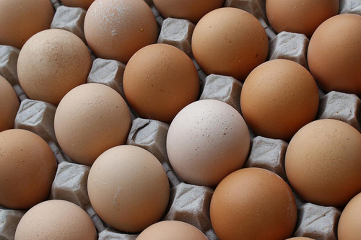 Foods with antioxidants:  eggs