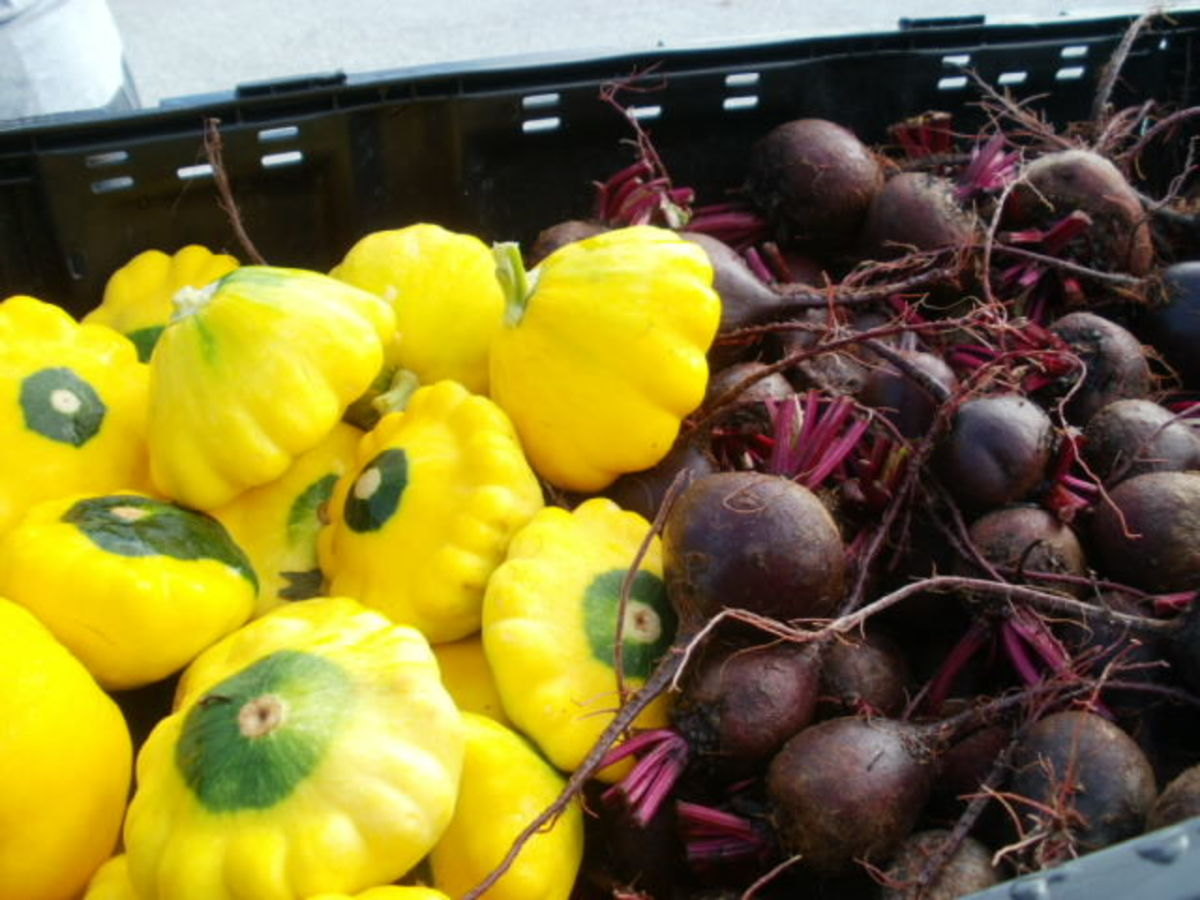 Squash and beets from The Barefoot Farmer
