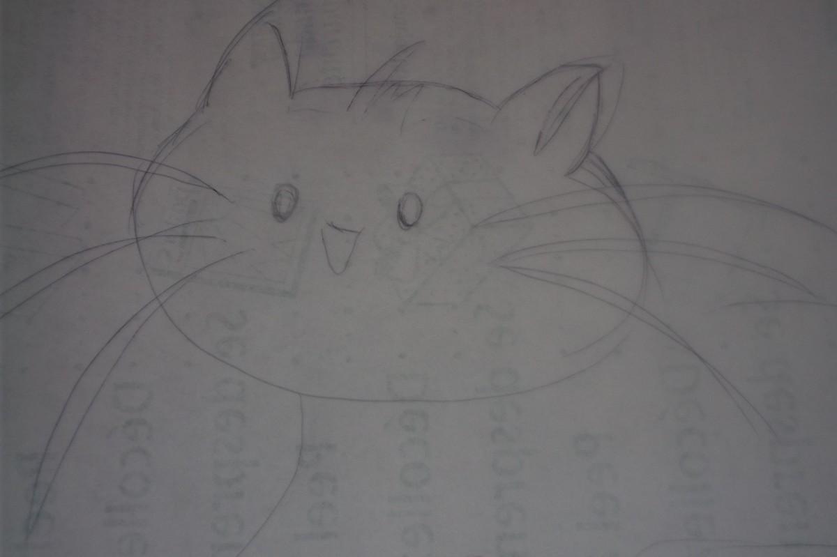 Kitty-close up