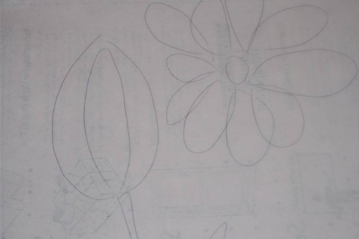 Flowers-close up
