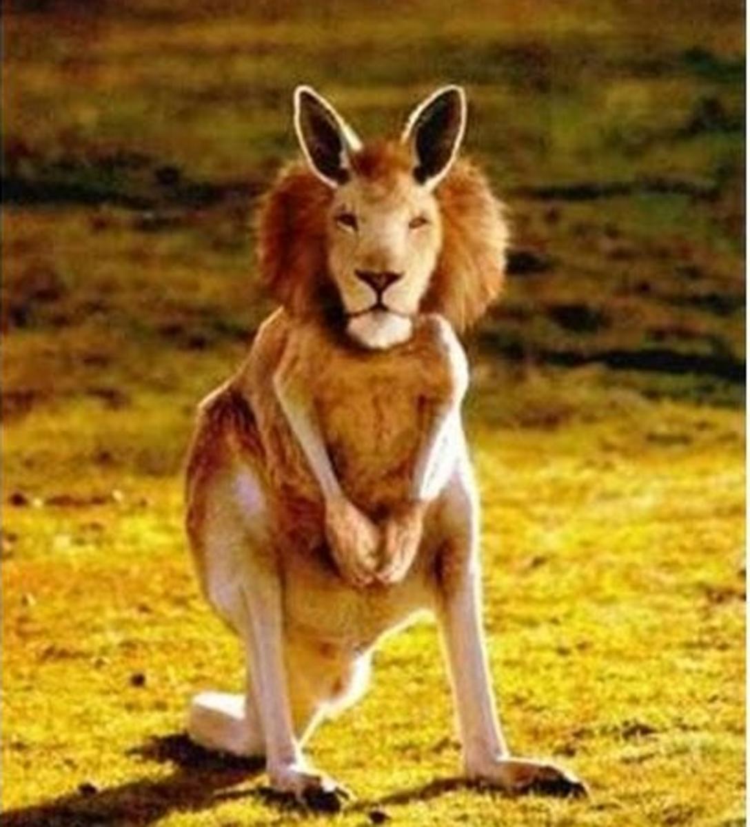 Kangaleo - a kind of Australian hopping lion