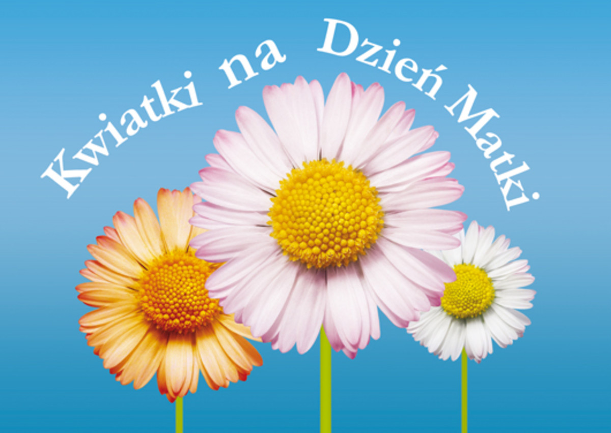 Happy Mothers Day card in Polish - When is Mothers Day?