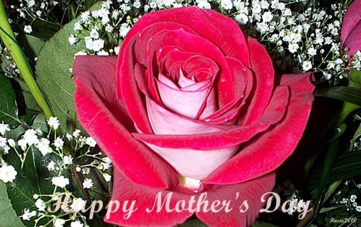 Happy Mothers Day, photo by Rosie2010 - When is Mothers Day?