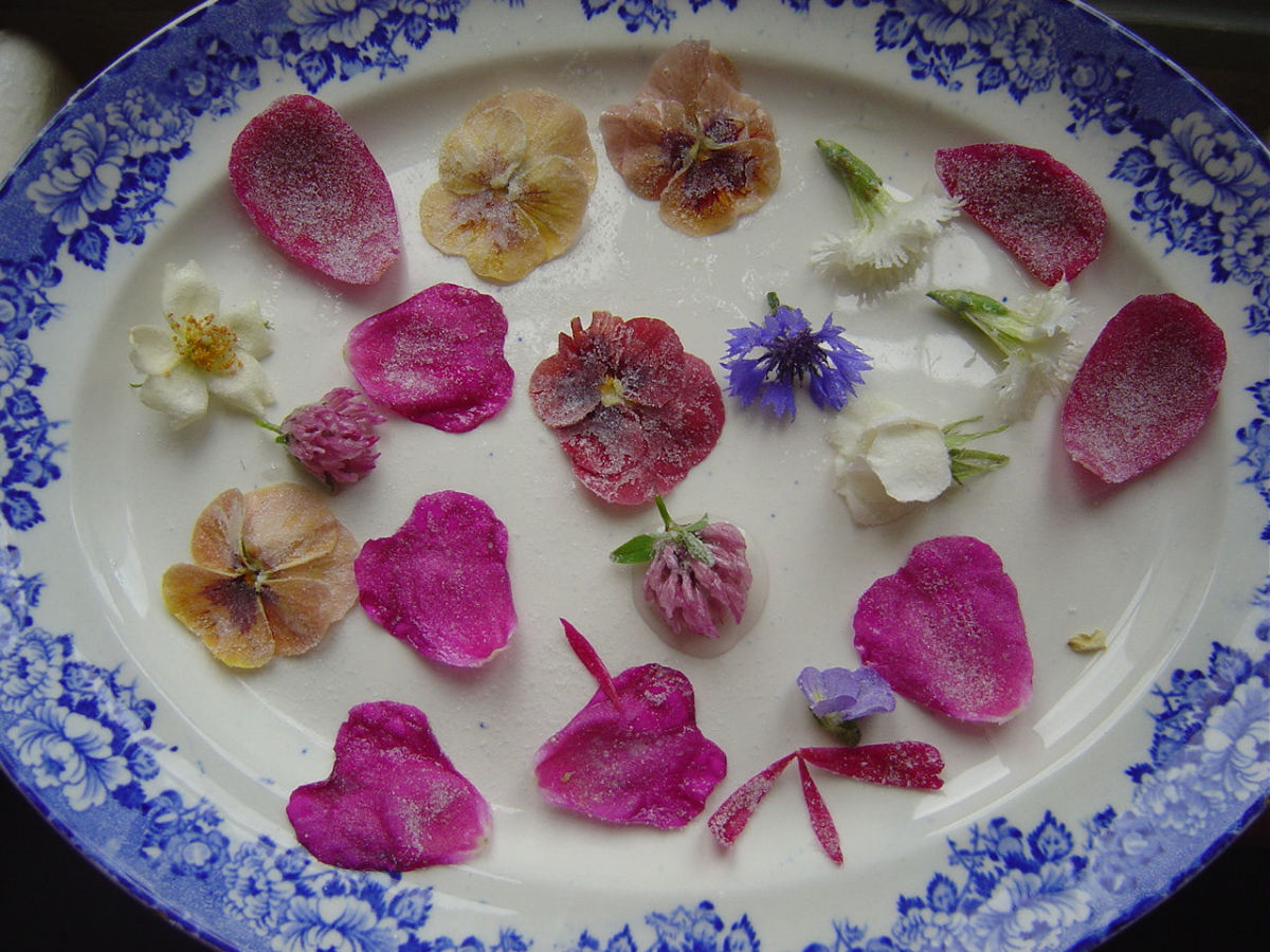 Sugared flowers make pretty cake decorations on vintage plate