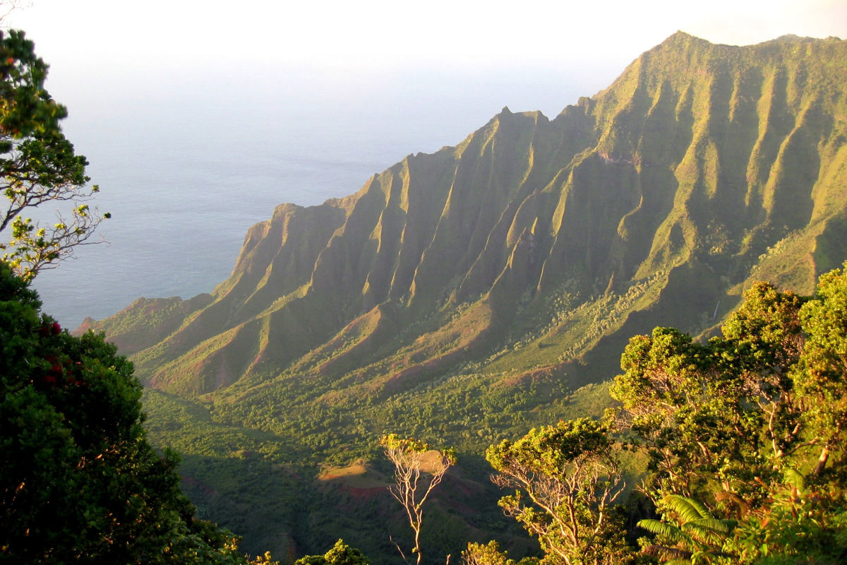 Koke'e State Park, Kauai Island, Hawaii.  This is a hikers paradise.