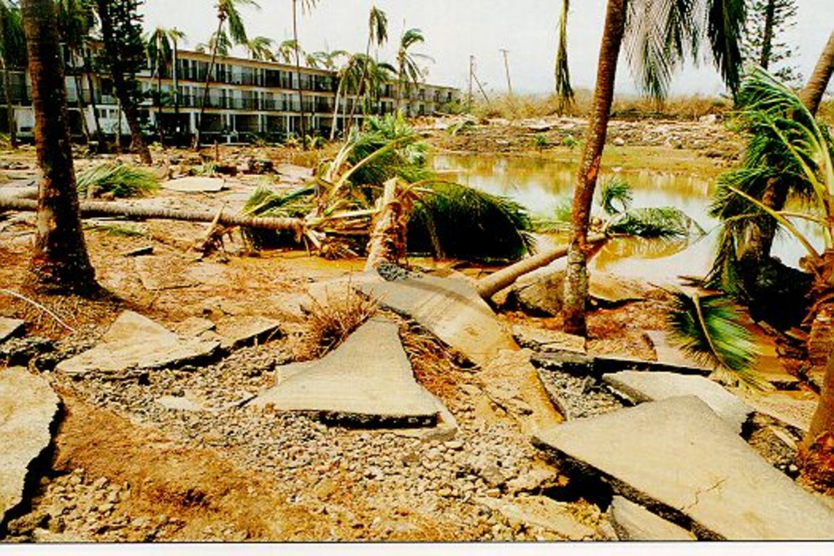 The ravages of hurricane Iniki.