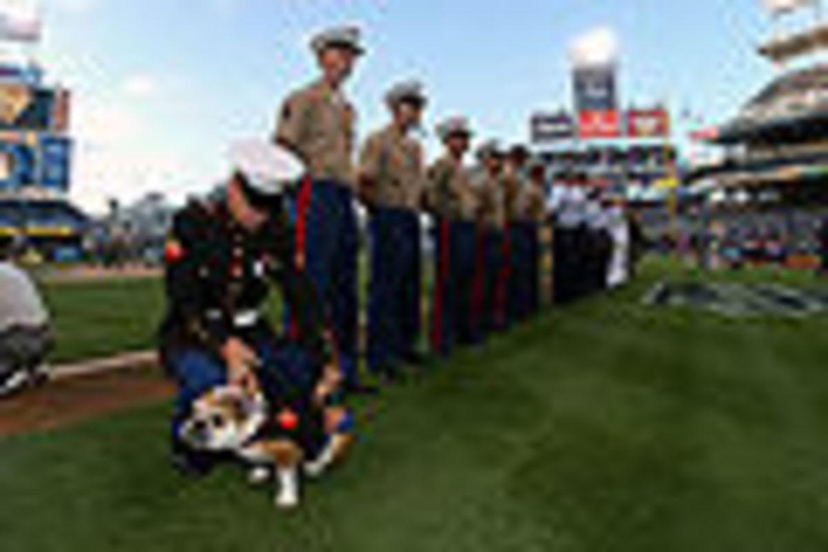 US Navy Marine fixes uniform on the Marine corps  bulldog mascot